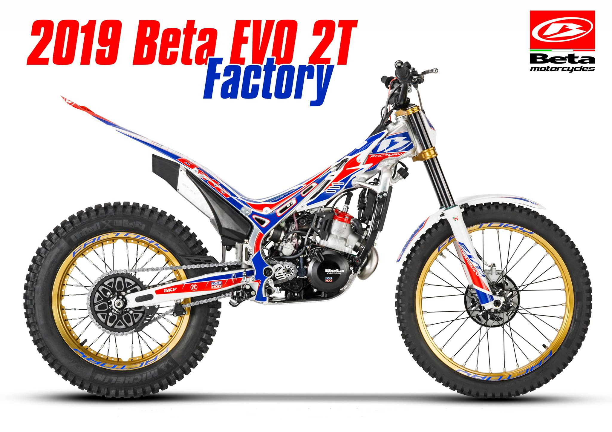 BETA EVO Factory 2019